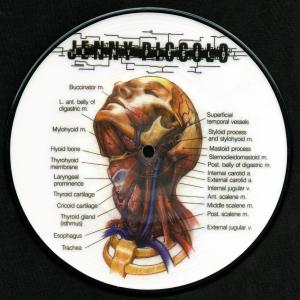 "picture of ""Lowest Common Denominator"" 7″ EP"