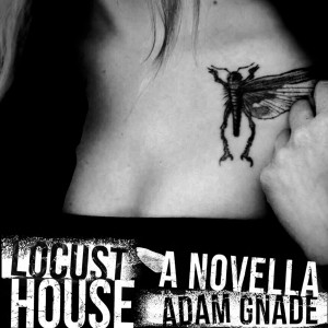 """picture of """"Locust House"""""""